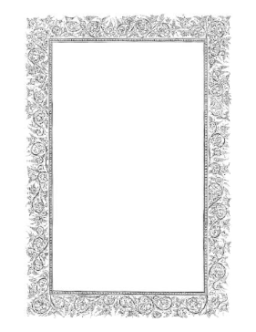 Floral BW Border page border